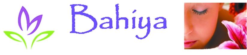 logo sans domicile